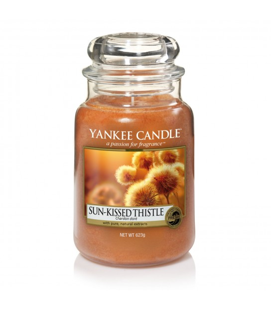 Sun-Kissed Thistle Large Candle
