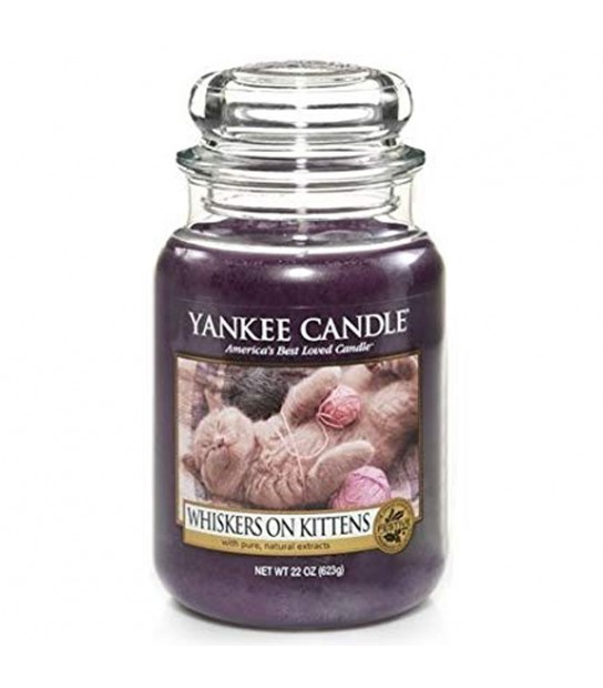 Whiskers on kittens large candle