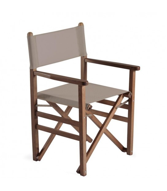 Beach foldable director chair