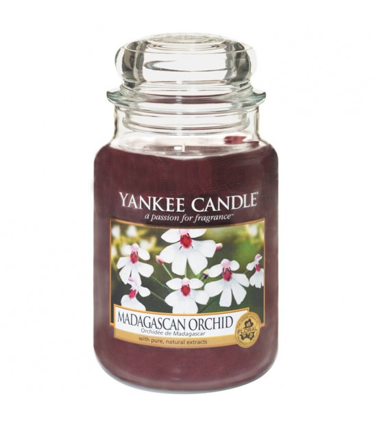 Madagascan Orchid Large Candle by Yankee Candle