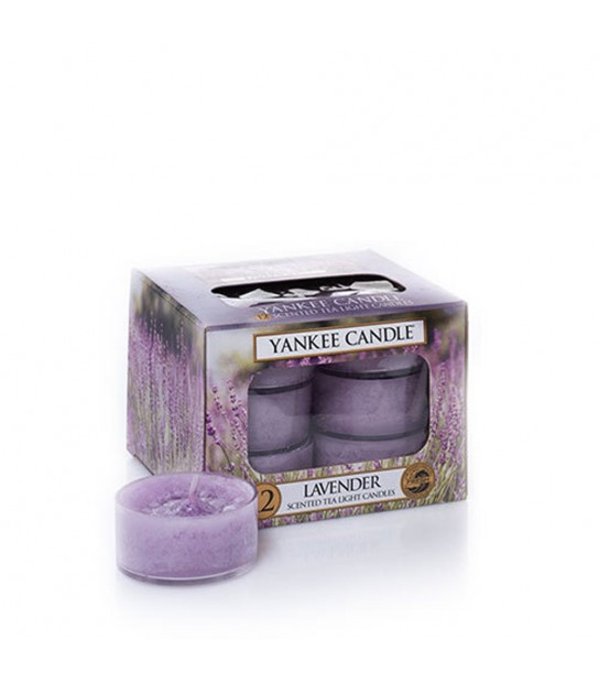 Lavenderpack of 12 t/light